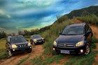 城市SUV的野外考验 CR-V与RAV4对比奇骏