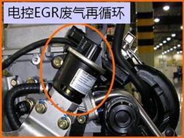 五菱之光故障,发动机启动以后不踩油门就熄火,求分析图片