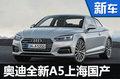 """奥迪全新A5""""落户""""上海 将于明年4月国产"""