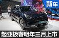 起亚推全新混动SUV 将于明年3月上市-图