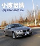 小改怡情/注重科技 试驾宝马2014款530Li