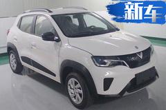 启辰今年将推出电动SUV 比欧拉R1还小7万起售