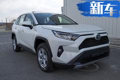 丰田全新RAV4实车曝光!10月上市/尺寸大幅提升