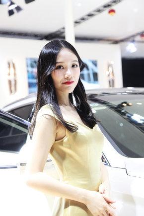 第17届东莞国际车展十一盛大开幕-图9