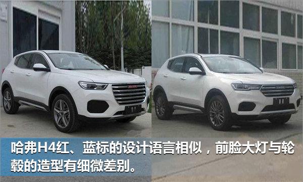 哈弗将推出全新SUV 搭载1.3T/2.0T发动机-图3