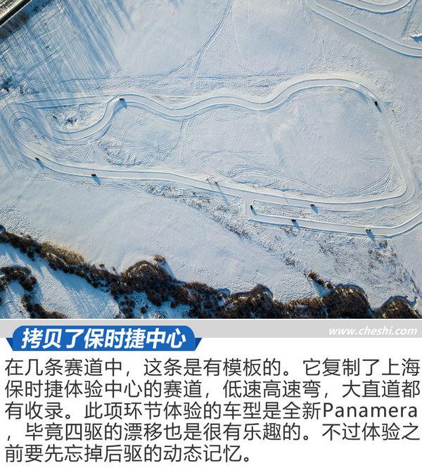 优乐国际体验之凌驾冰雪 这些青蛙一点都不怕冷吗-图2