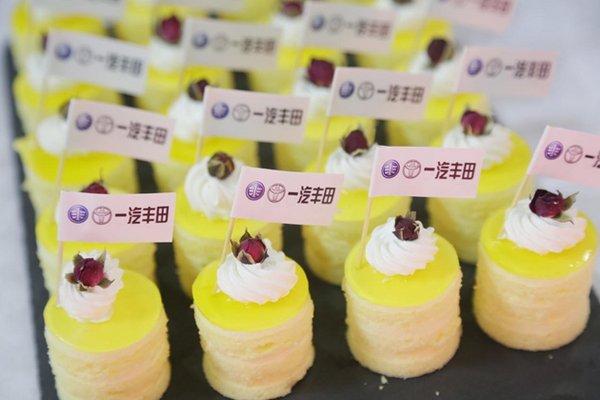 一汽丰田越野双雄鹭岛厦门发布会结束-图4