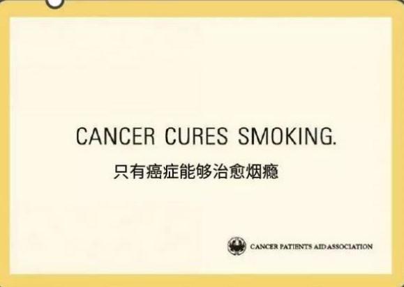 长安欧尚A800:为家人的健康呼吸而生-图1