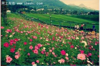 九龙滑草场位于国家aaaa级九龙山旅游风景区核心区域,是德阳地区最大