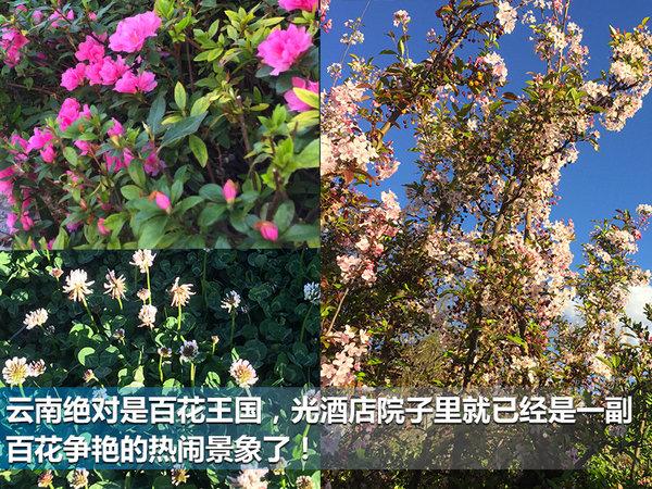重返泸沽湖 重返青春 风光580云南之旅-图2