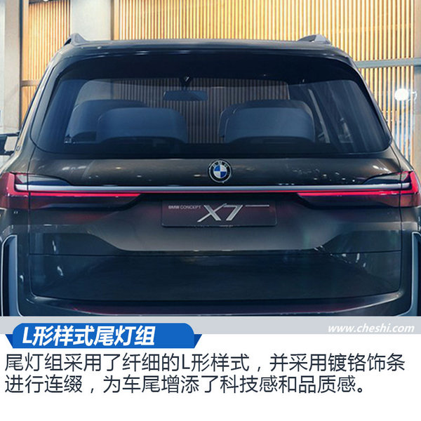 近赏宝马X7插电式混动概念车 超大空间新境界-图7