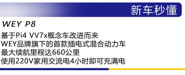 紧跟新能源车潮流 广州车展实拍体验WEY P8-图2