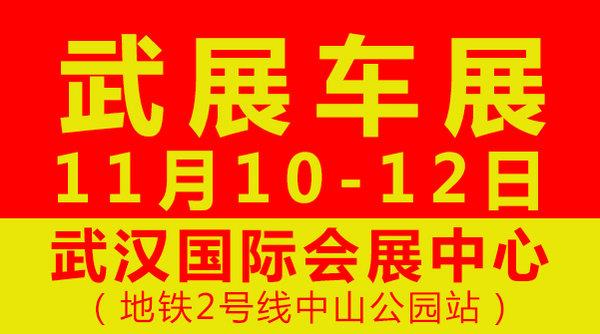 2017年11月10-12日武汉车展狂欢11-图1
