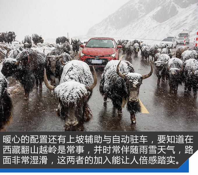 轻松征服了108道拐 藏族美女爱上雷凌的24小时-图4