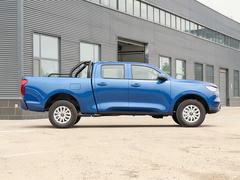 2019款  2.0T商用版手动汽油四驱精英型长箱GW4C20B