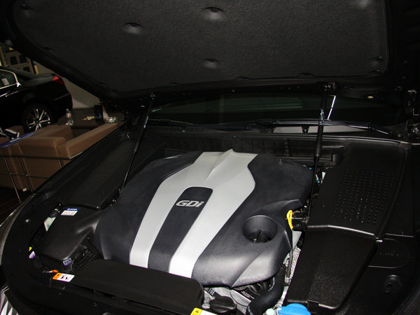 现代(进口)  3.8L GDi 发动机主体特写