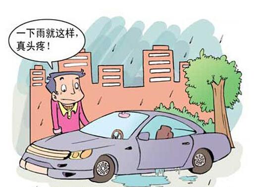 在温暖而潮湿的天气里,汽车的密闭空间极易滋生细菌,防潮杀菌工作