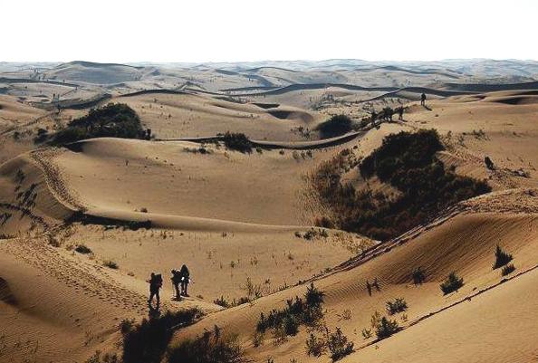 """31座森林星之旅""""第二季秋季精选站呼市库不齐沙漠景区的活动,实现"""