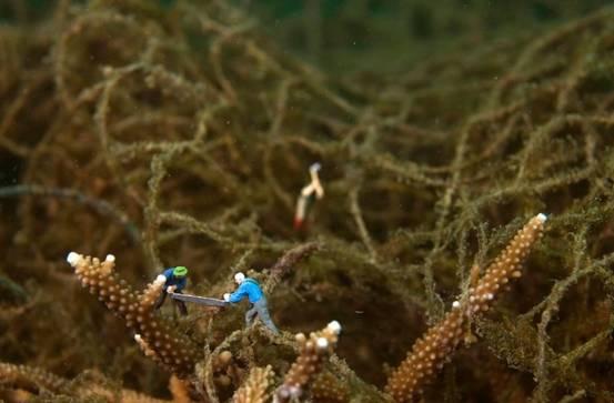 废旧物品做海底动物