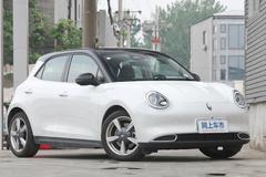 欧拉将推6款新车 闪电猫领衔 酷似保时捷Panamera